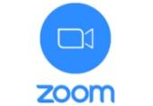 Zoom Video Meeting